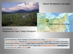 Де́вственные леса́ Ко́мирасположены на севереУральских горвРеспублике Ком