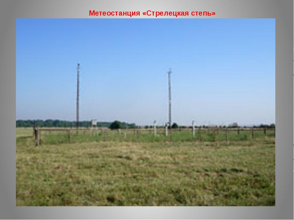 Метеостанция «Стрелецкая степь»