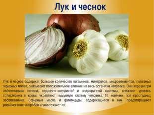 Лук и чеснок Лук и чеснок содержат большое количество витаминов, минералов, м
