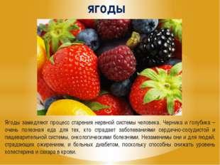 ягоды Ягоды замедляют процесс старения нервной системы человека. Черника и го