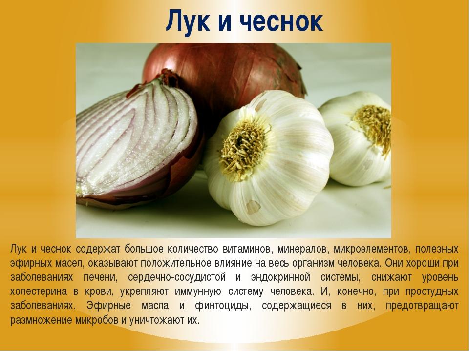 Лук и чеснок Лук и чеснок содержат большое количество витаминов, минералов, м...