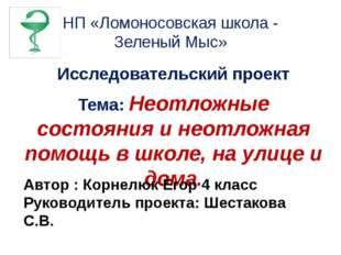 НП «Ломоносовская школа - Зеленый Мыс» Исследовательский проект Тема: Неотлож