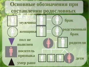 мужчина женщина пол не выяснен носитель признака умер рано брак родственный б