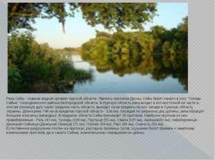 Река Сейм - главная водная артерия Курской области. Являясь притоком Десны, С