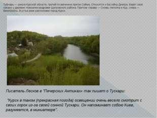 Ту́скарь — река в Курской области, третий по величине приток Сейма. Относится