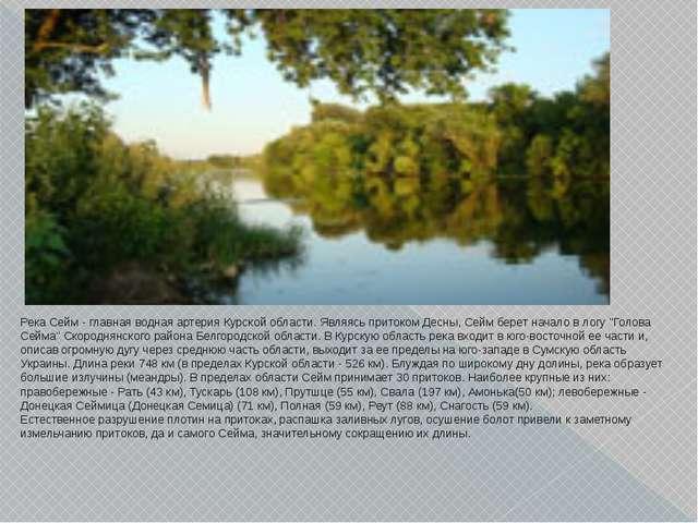 Река Сейм - главная водная артерия Курской области. Являясь притоком Десны, С...