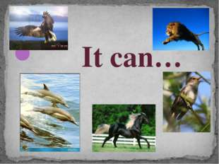 It can…