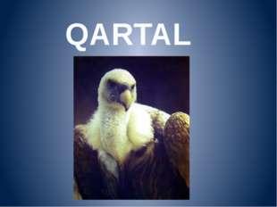 QARTAL