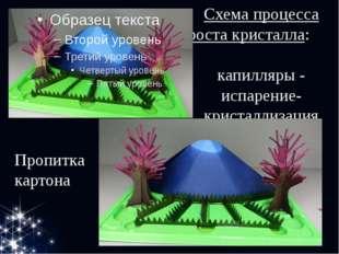 Схема процесса роста кристалла: капилляры - испарение-кристаллизация Пропитка