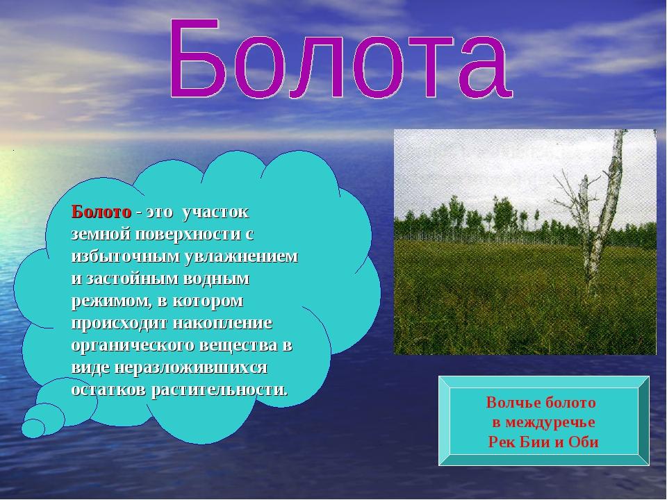 Болото - это участок земной поверхности с избыточным увлажнением и застойным...