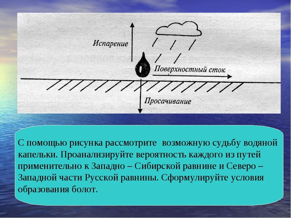 С помощью рисунка рассмотрите возможную судьбу водяной капельки. Проанализиру...