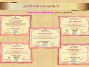 Участие в вебинарах  (январь-февраль)