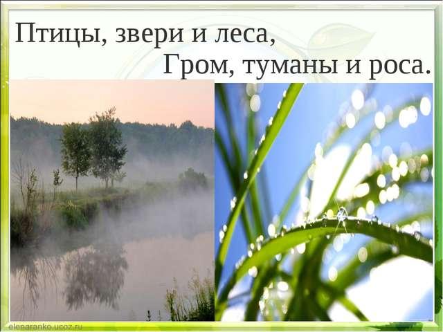 Гром, туманы и роса. Птицы, звери и леса,