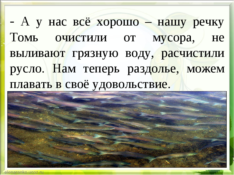 - А у нас всё хорошо – нашу речку Томь очистили от мусора, не выливают грязну...