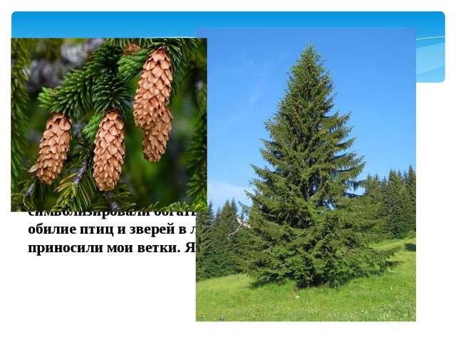 1 конкурс «Узнай дерево» Я знакома всем с детства. Вместе со мной под Новый г...