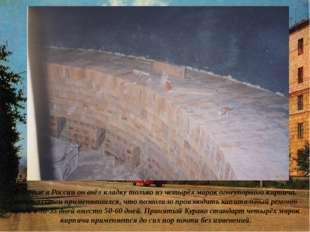 Впервые в России он ввёл кладку только из четырёх марок огнеупорного кирпича,