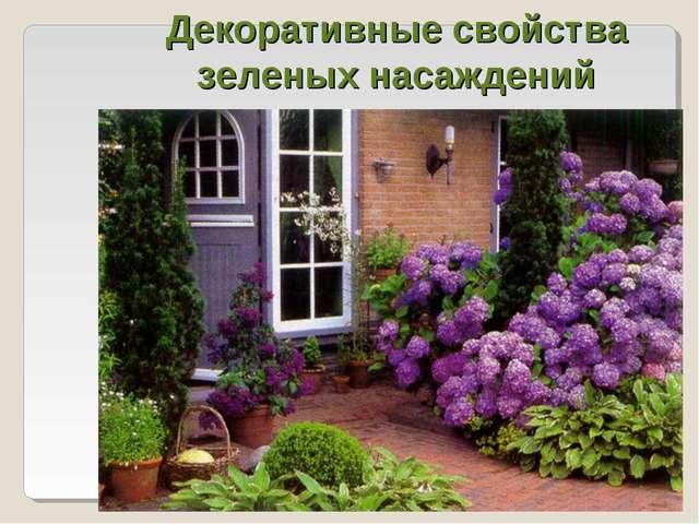 Декоративные свойства зеленых насаждений