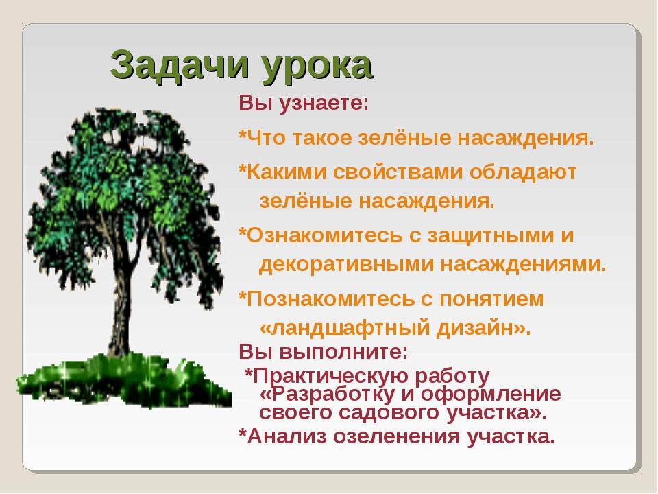 Задачи урока Вы узнаете: *Что такое зелёные насаждения. *Какими свойствами об...