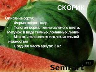 СКОРИК Описание сорта: ·Форма плода - шар ·Толстая корка, темно-зеленого цв
