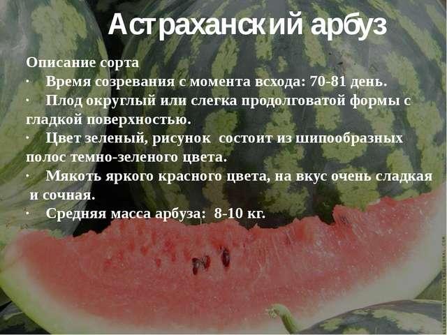 Астраханский арбуз Описание сорта ·Время созревания с момента всхода: 70-81...