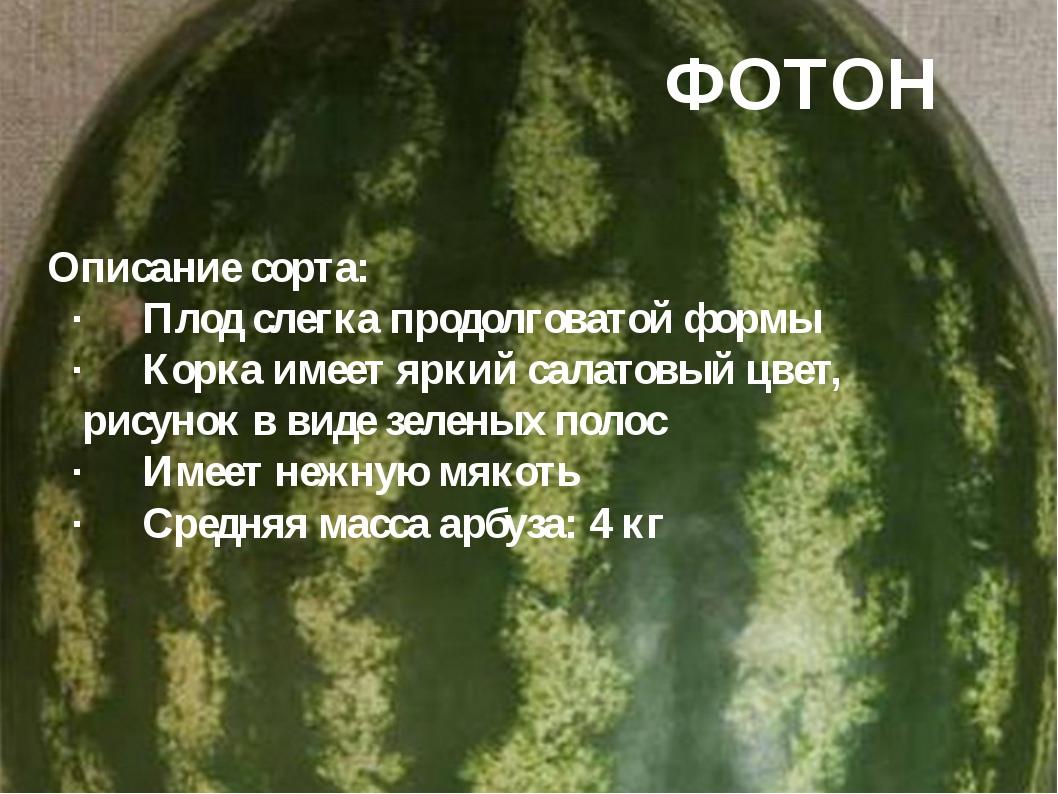 ФОТОН Описание сорта: ·Плод слегка продолговатой формы ·Корка имеет яркий с...