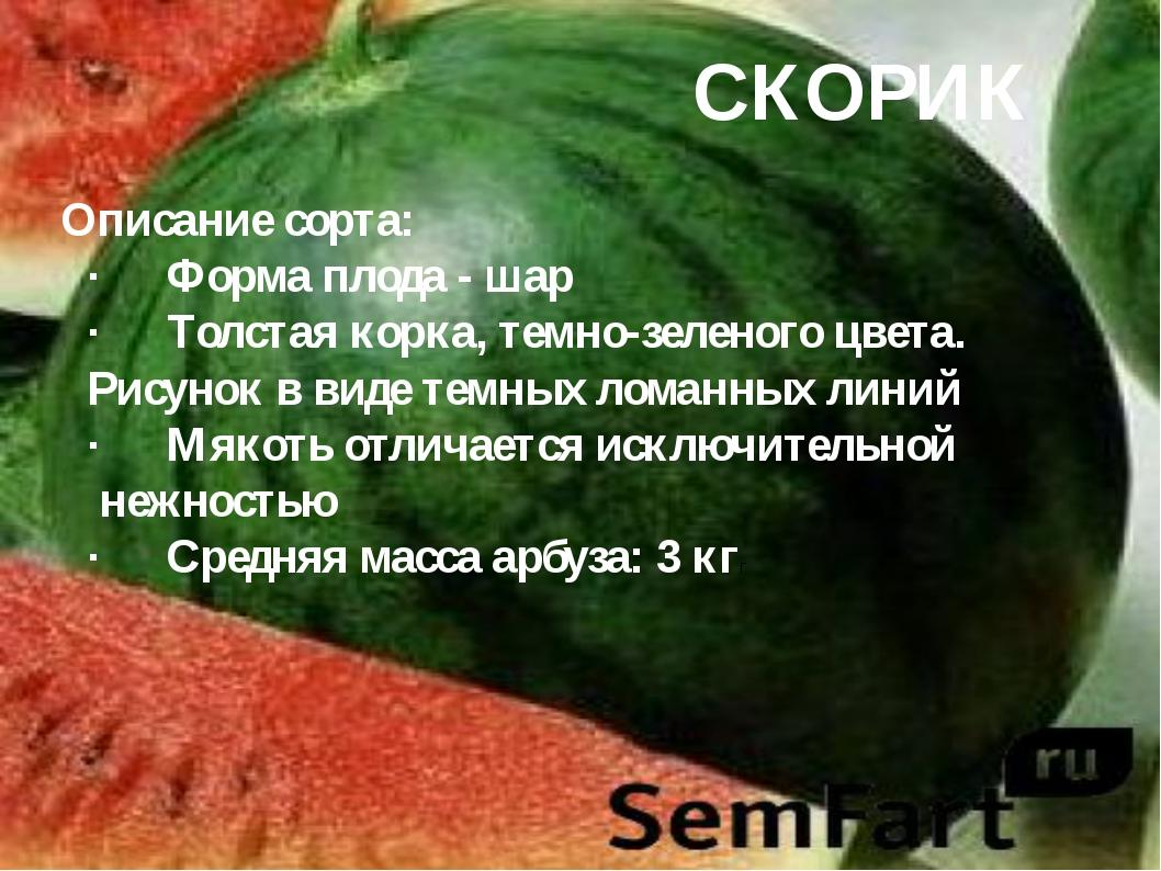 СКОРИК Описание сорта: ·Форма плода - шар ·Толстая корка, темно-зеленого цв...