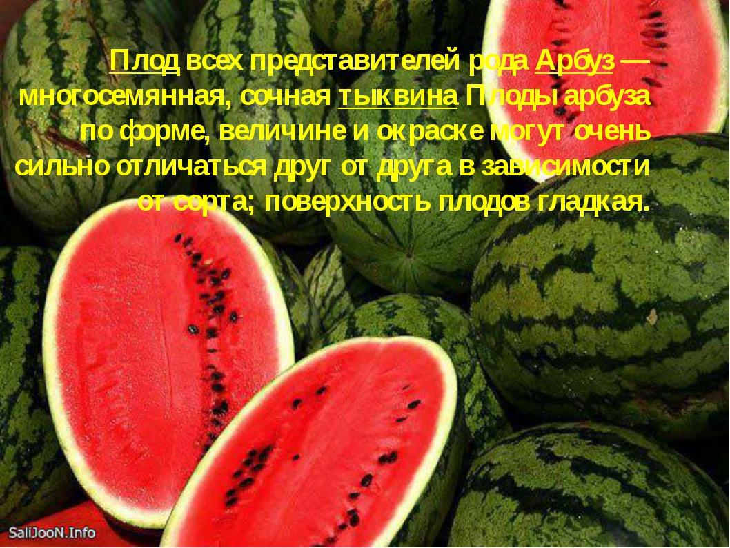 Плод всех представителей рода Арбуз — многосемянная, сочная тыквина Плоды арб...