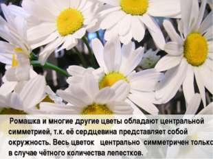 Ромашка и многие другие цветы обладают центральной симметрией, т.к. её сердц