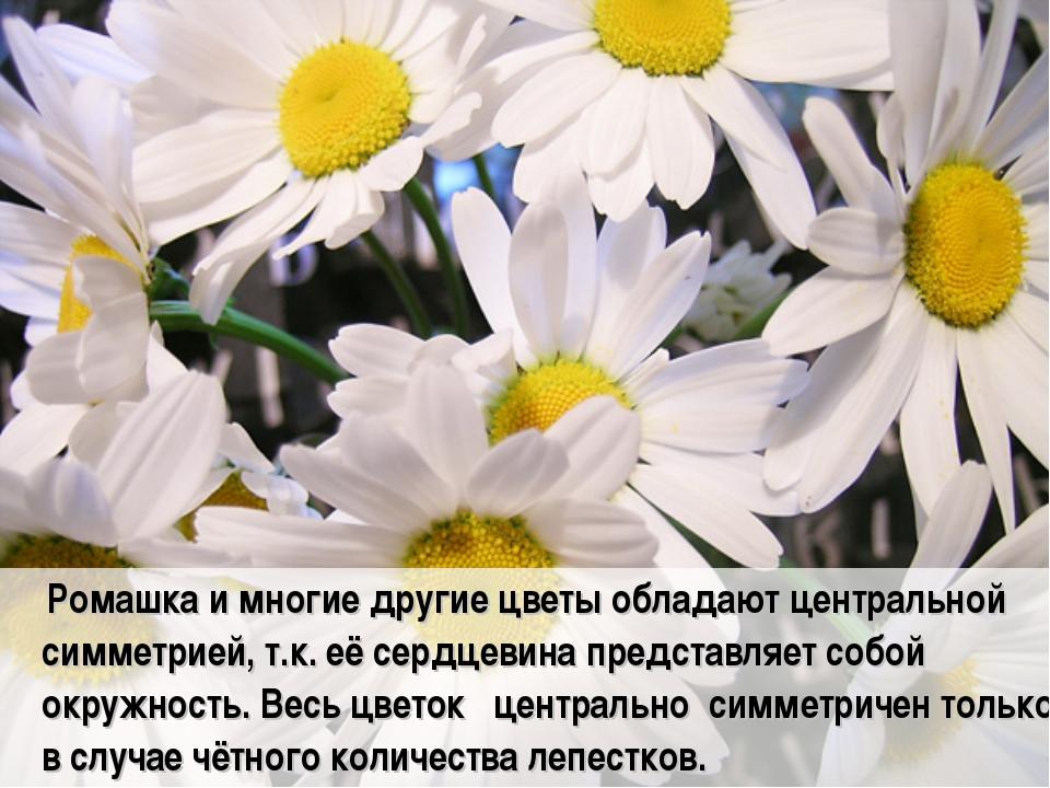 Ромашка и многие другие цветы обладают центральной симметрией, т.к. её сердц...