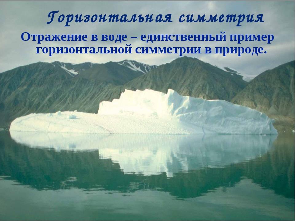 Отражение в воде – единственный пример горизонтальной симметрии в природе. Го...