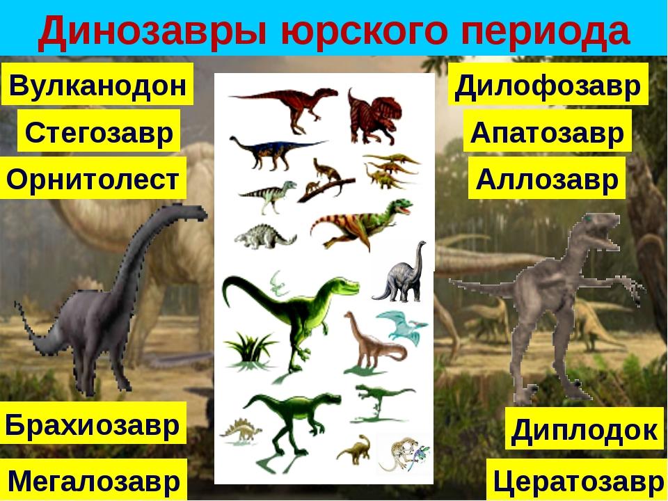 Динозавры юрского периода Аллозавр Апатозавр Брахиозавр Цератозавр Дилофозав...