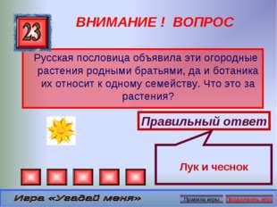 ВНИМАНИЕ ! ВОПРОС Русская пословица объявила эти огородные растения родными б