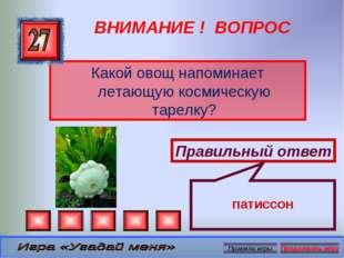 ВНИМАНИЕ ! ВОПРОС Какой овощ напоминает летающую космическую тарелку? Правиль