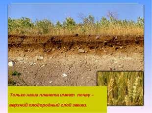 Только наша планета имеет почву – верхний плодородный слой земли.
