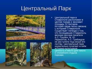 Центральный Парк Центральный парк в Ставрополе расположен в центре города и з