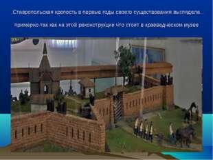 Ставропольская крепость в первые годы своего существования выглядела примерно