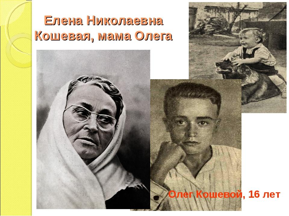 Елена Николаевна Кошевая, мама Олега Олег Кошевой, 16 лет