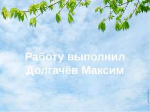 Работу выполнил Долгачёв Максим