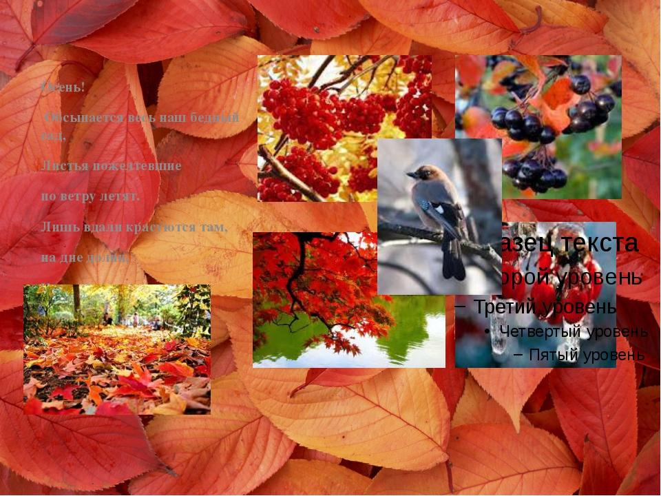 Осень! Обсыпается весь наш бедный сад, Листья пожелтевшие по ветру летят. Ли...