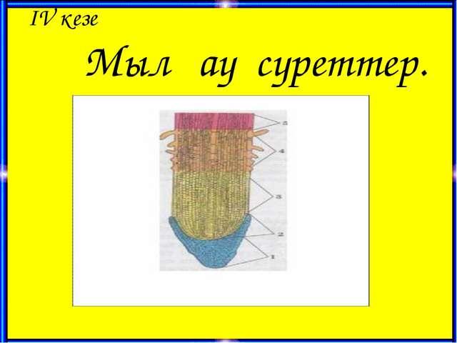 ІV кезең Мылқау суреттер.