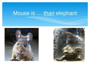 Mouse is … than elephant