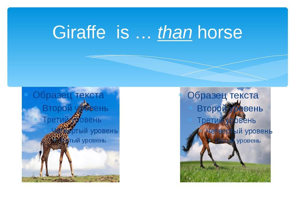 Giraffe is … than horse
