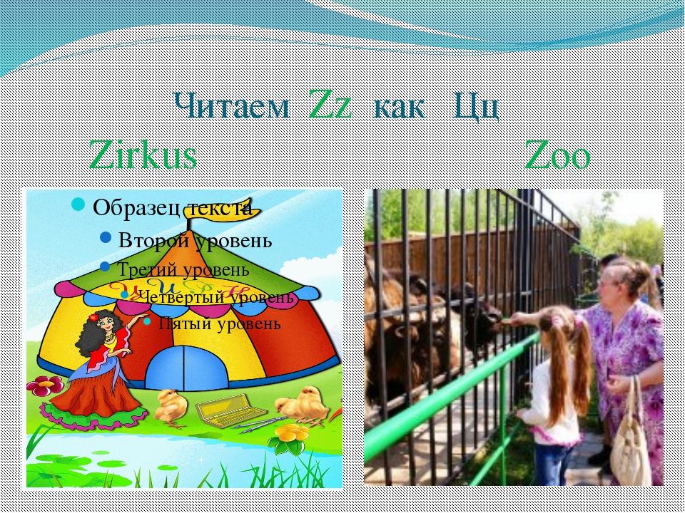 Читаем Zz как Цц Zirkus Zoo