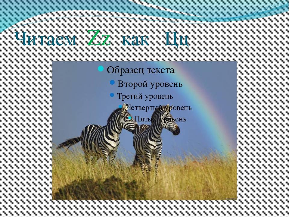 Читаем Zz как Цц