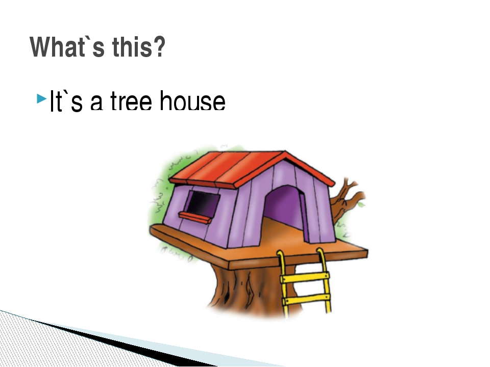 It`s a tree house What`s this?
