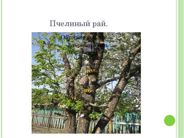 Пчелиный рай.