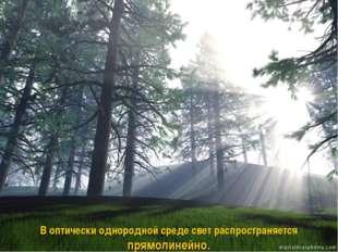 В оптически однородной среде свет распространяется прямолинейно.