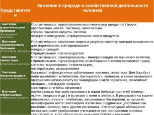 Представители Значениев природе и хозяйственной деятельности человека Бактер