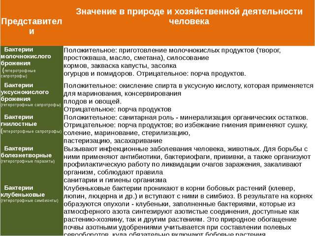 Представители Значениев природе и хозяйственной деятельности человека Бактер...