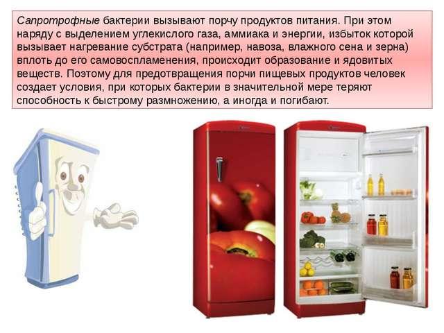 Сапротрофныебактерии вызывают порчупродуктов питания. При этом наряду с выд...
